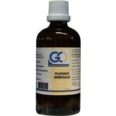 GO Platanus orientalis