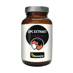 OPC-Extrakt 400 mg
