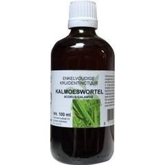Natura Sanat Acorus calamus / beruhigt die Wurzeltinktur bio