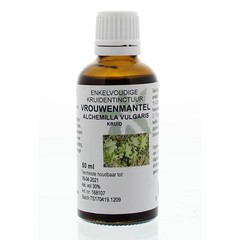 Natura Sanat Alchemilla vulgaris / weibliche Manteltinktur