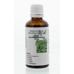 Azadirachta indica fol / neem Tinktur