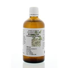 Boswellia serrata / Boswellia-Tinktur