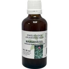 Carduus marianus fructus / Mariendisteltinktur