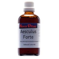 Aesculus forte