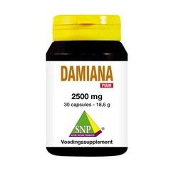 Damiana-Extrakt 2500 mg rein