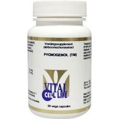 Vital Cell Life Pycnogenol