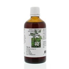 Natura Sanat Bacopa monnieri Kräuter / Bacopa Tinktur 100 ml