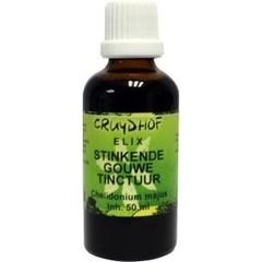 Elix Celandine Tinktur bio 50 ml