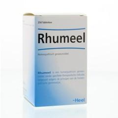 Heel Ganze Rhumeel 250 Tabletten