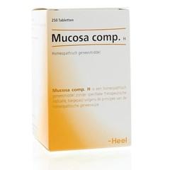 Heel Ganze Mucosa Compositum H 250 Tabletten