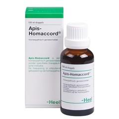 Heel Ganze Apis-Homaccord 100 ml