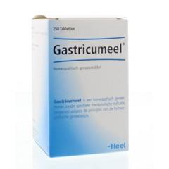 Heel Sehr Gastricumeel 250 Tabletten