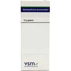 VSM Bellis Perennis D12 10 Gramm