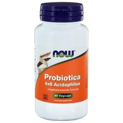 NOW Probiotika 4 x 6 acidophilus 60 vcaps