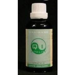 Alive Lebendige Lymphdrainage 50 ml
