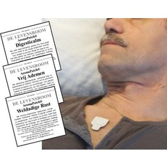 De Levensboom Aromapatch Digesticalm 10 Stück