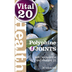 Vital20 Polyphine Gelenke 548 mg 30 Kapseln.