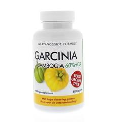 Natusor Garcinia cambogia 60% HCA 60 Kapseln.