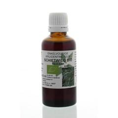 Natura Sanat Salix alba / Weidenrindentinktur bio