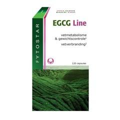 Fytostar EGCG Line maxi 120 Kapseln