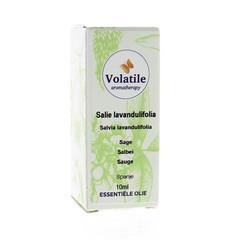 Volatile Flüchtige Salbei Lavandulifolia 10 ml