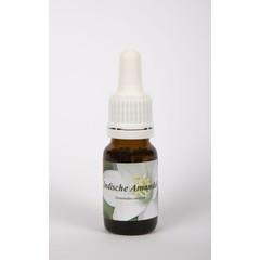 Star Remedies Indische Mandel 10 ml