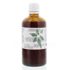 Natura Sanat Boswellia / Yucca Komplex Tinktur 100 ml