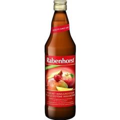 Rabenhorst Immunsystem Saft 750 ml