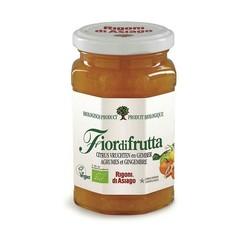 Fiordifrutta Citrus Mix Ingwermarmelade 260 Gramm