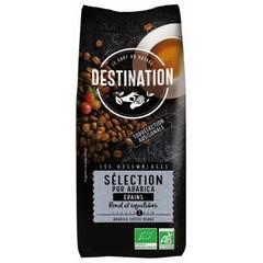 Destination Bestimmungsort Kaffeeauswahl Arabica Bohnen 1 Kilogramm