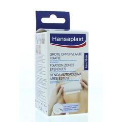 Hansaplast Große Oberfläche 1 mx 10 cm 1 Stck