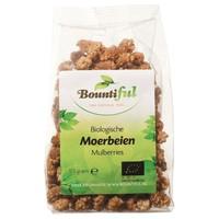 Bountiful Bountiful Reichhaltige Maulbeere Bio 175 Gramm