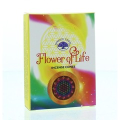 Kegel Weihrauch Blume des Lebens 10 Stück