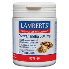 Lamberts Ashwagandha Komplex 60 Kapseln