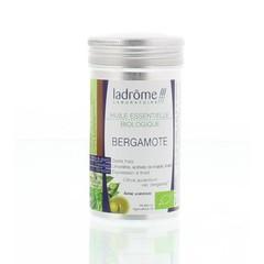 Bergamoteöl Bio 10 ml