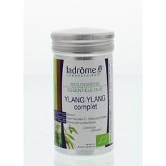 Ylang Ylang Öl Bio 10 ml