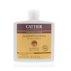 Shampoo Joghurt 250 ml täglich