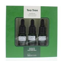 Geschenkbox Teebaum ätherische Öle 1 Stck