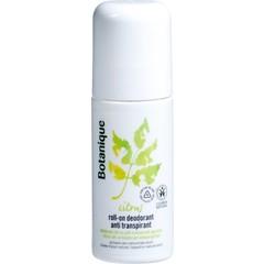 Citrus Deodorant Rolle auf Antitranspirant 50 ml