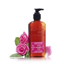 Shampoo göttliches trockenes und feines Haar Bio 200 ml