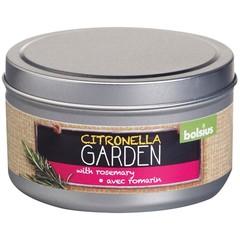 Duftkerzenform Citronella / Rosmarin 1 Stck