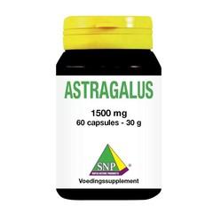 Astragaluswurzelextrakt 1500 mg