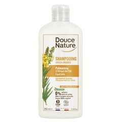Shampoo gegen Schuppen Palmarosa