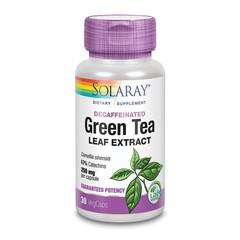 Grüntee-Extrakt 250 mg