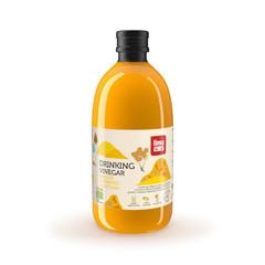 Kurkuma-Ingwer-Essig-Drink Bio