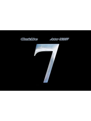 Mailbox design Stainless Steel House Number - Classic, Number 7