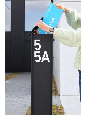 eSafe Fenix eSafe Top Medium - Zwart