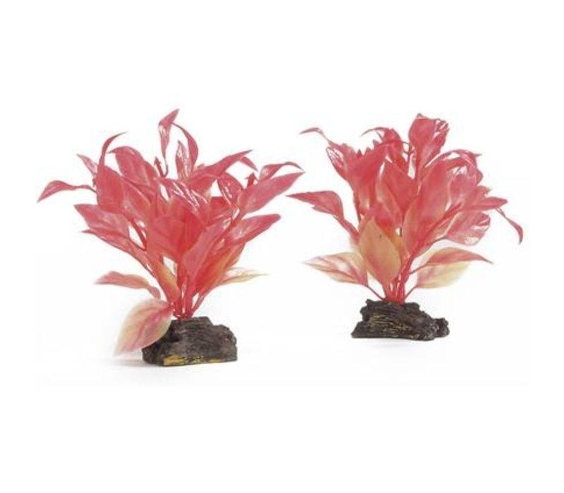 Aqua Plant 2