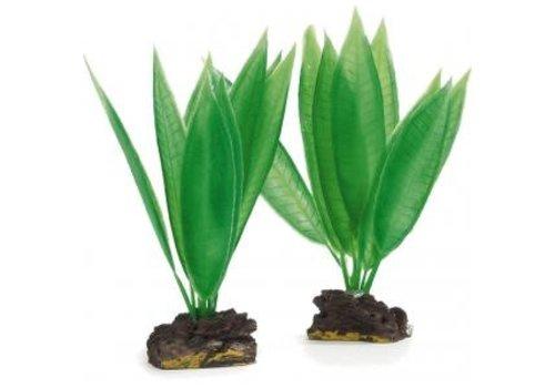 Aqua Plant 3