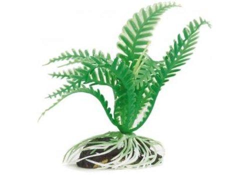 Aqua Plant 4